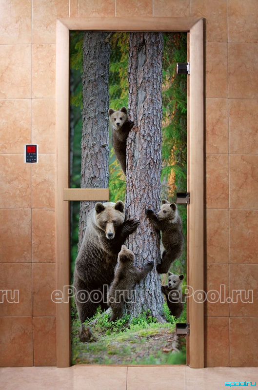 Дверь стеклянная с фотопечатью «Мишки»