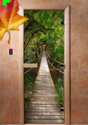 Дверь стеклянная с фотопечатью «Мост»